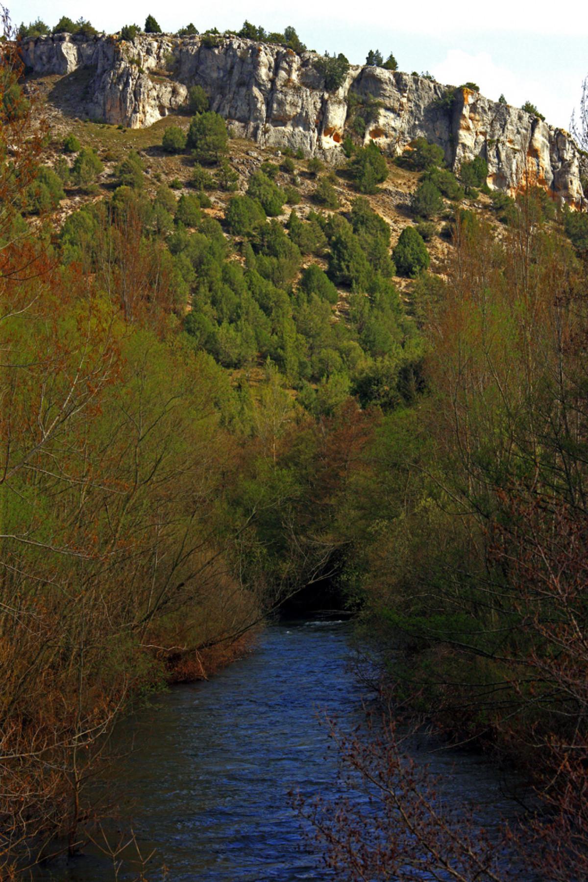 14 Sabinares de Arlanza. Rio Arlanza