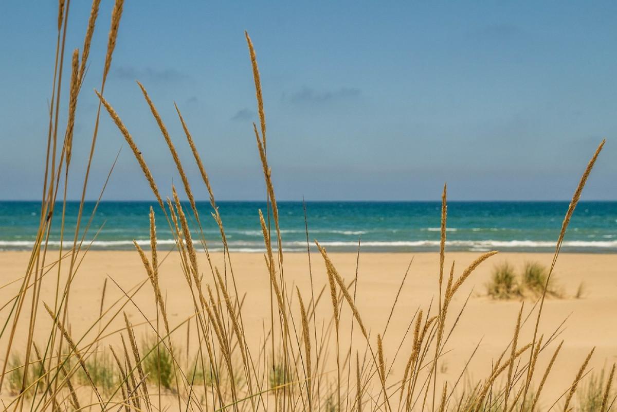 Marruecos Playa Sau00efdia (3)