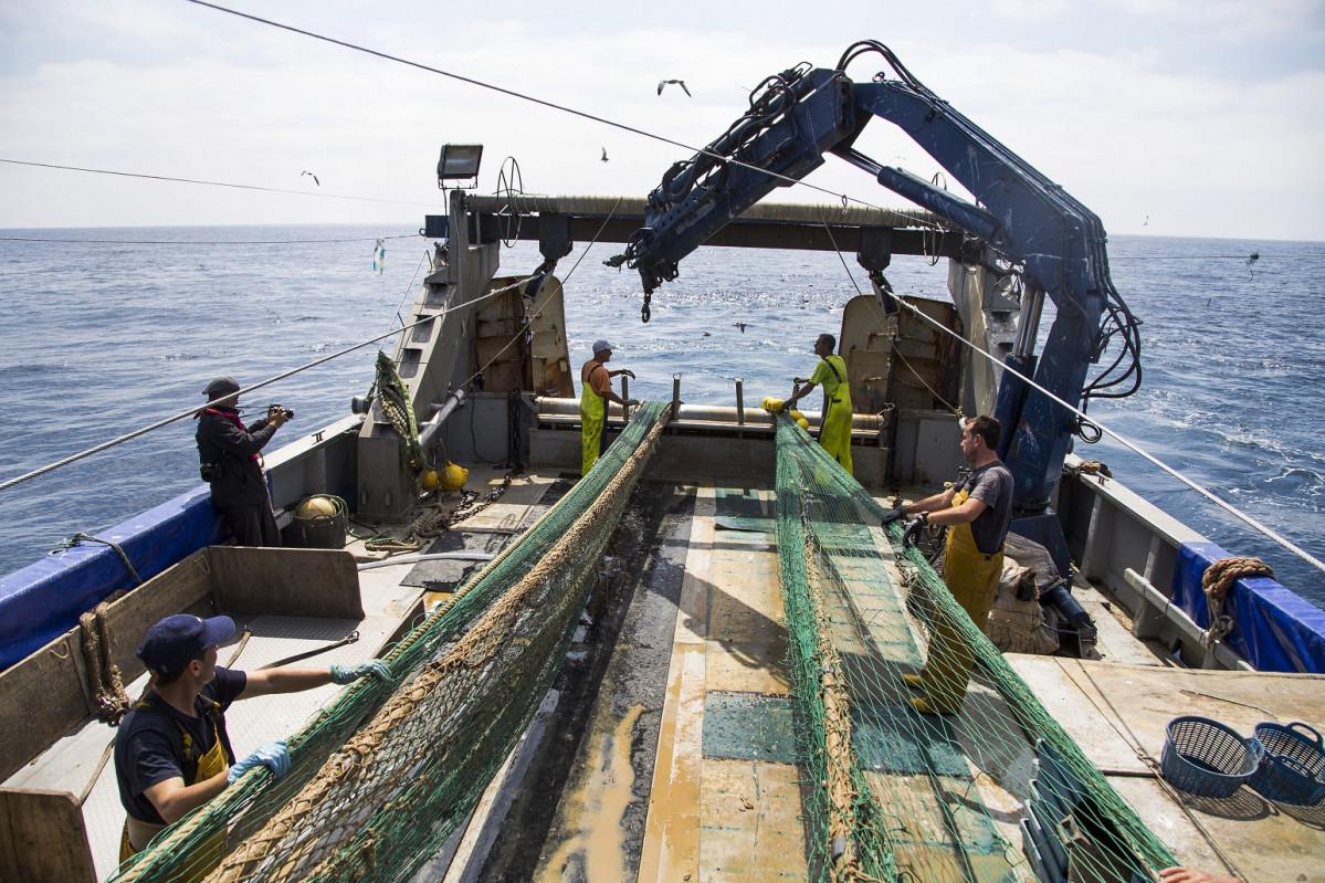 CASTELLON (junio 2019)   Pescaturismo 3