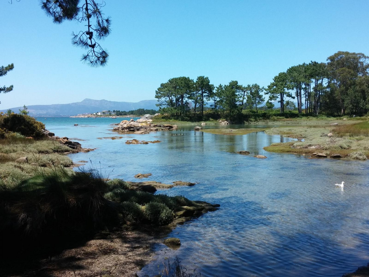 Ilha de Arousa Parque Natural de O Carreirón