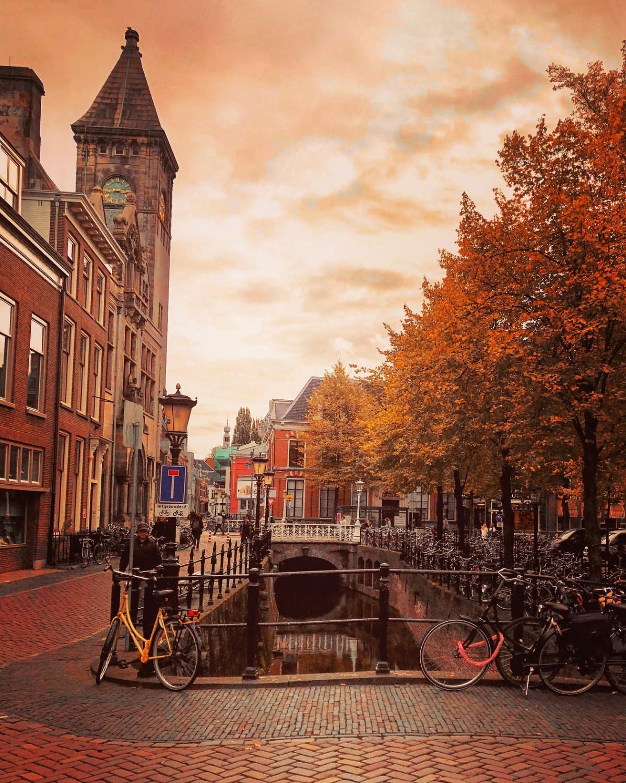 Utrecht 4 outono